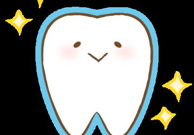 入れ歯の取り扱い・手入れについて